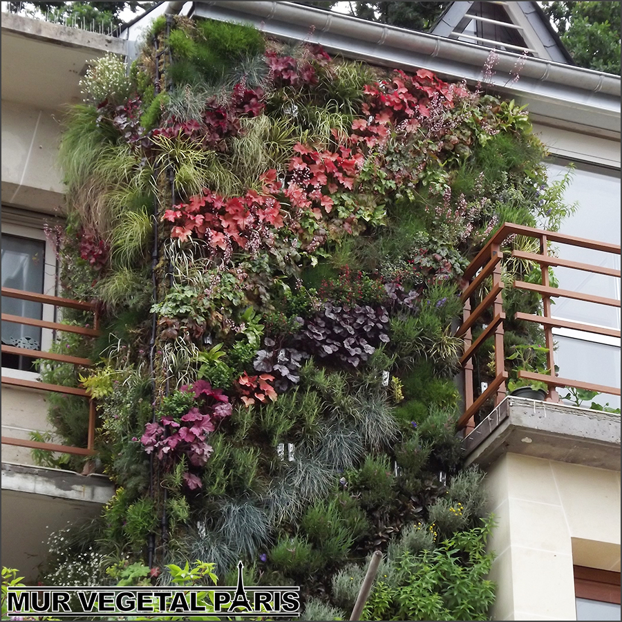 Mur vegetal exterieur skyflor facade accueil design et for Mur vegetal exterieur synthetique